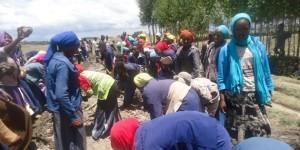 Community_work_2015_HEKS_Ethiopia
