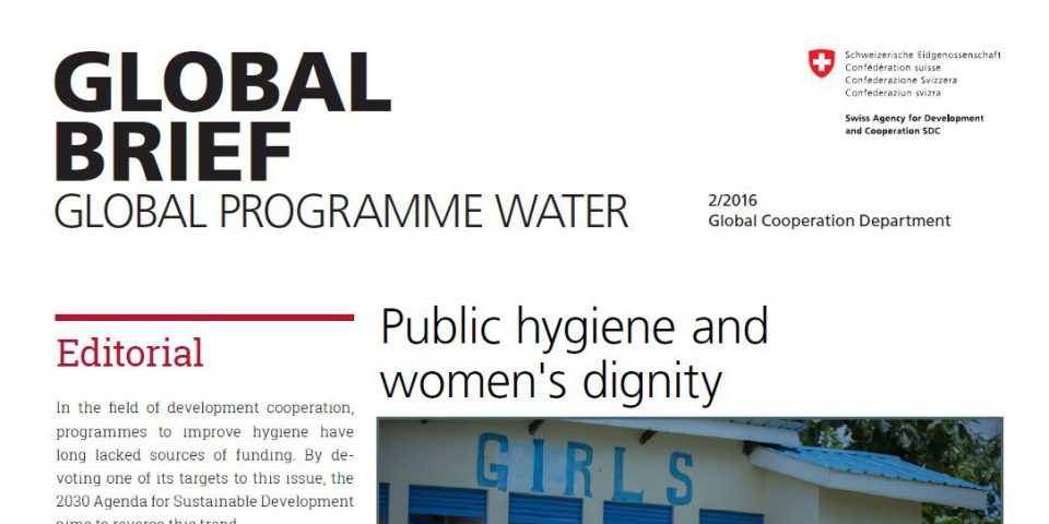 Picture_Global_Brief_Global_Programme_Water_2016_SDC
